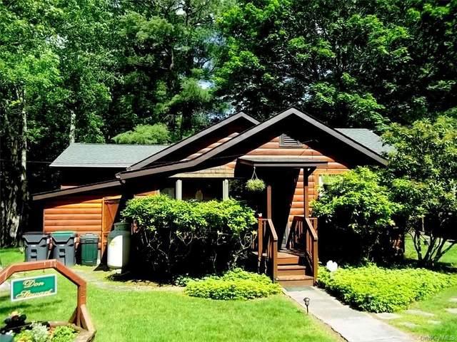 8 Moose Trail, Smallwood, NY 12778 (MLS #H6113551) :: Signature Premier Properties