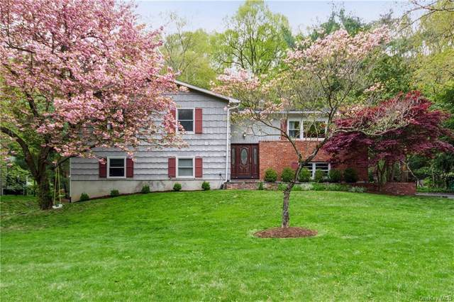75 Hidden Hollow Lane, Millwood, NY 10546 (MLS #H6113565) :: Signature Premier Properties