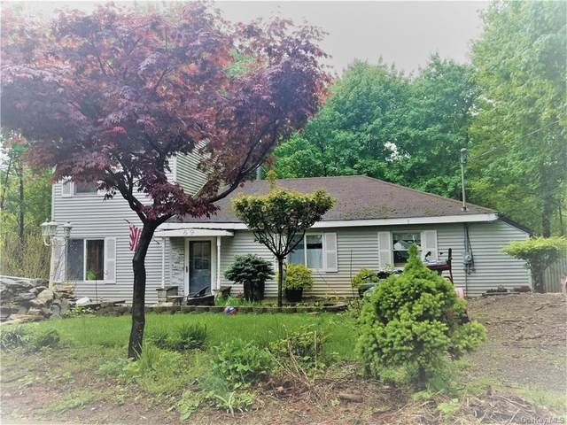 69 Canterbury Road, Fort Montgomery, NY 10922 (MLS #H6113570) :: Signature Premier Properties