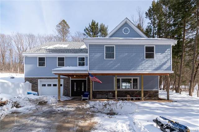156 Barkit Kennel Road, Pleasant Valley, NY 12569 (MLS #H6113574) :: Signature Premier Properties