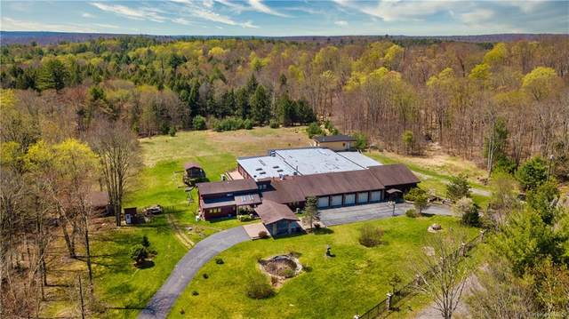 399 Gregory Road, Monticello, NY 12701 (MLS #H6113650) :: Signature Premier Properties
