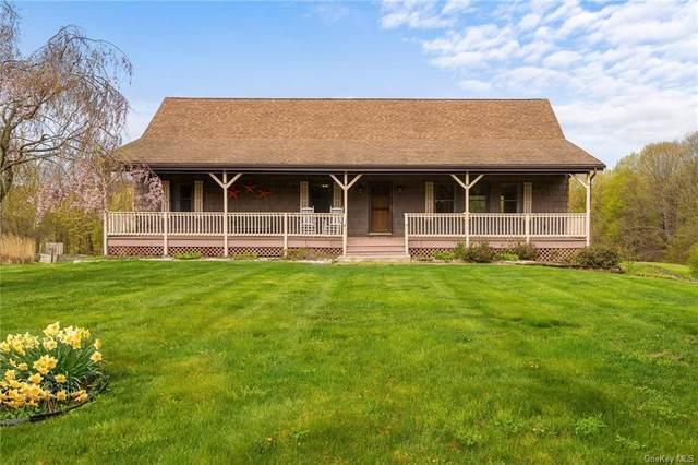 113 Christian Hill Road, Dover Plains, NY 12522 (MLS #H6113685) :: Signature Premier Properties