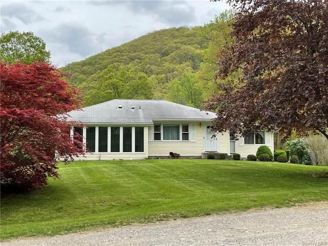 219 Carol Lane, Fishkill, NY 12524 (MLS #H6113716) :: The Home Team