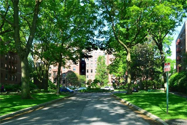 213 Larchmont Acre 3A, Larchmont, NY 10538 (MLS #H6113736) :: RE/MAX RoNIN