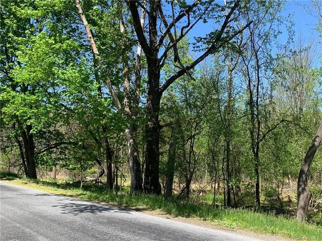 26 Four Corners Road, Warwick, NY 10990 (MLS #H6113761) :: Signature Premier Properties