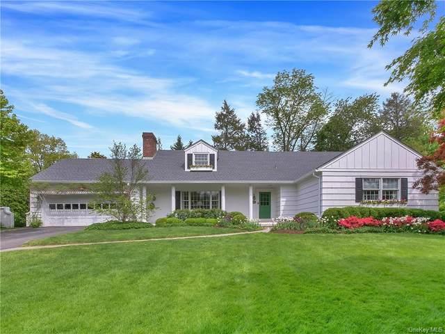 61 Brookfield Road, Mount Vernon, NY 10552 (MLS #H6113770) :: Carollo Real Estate