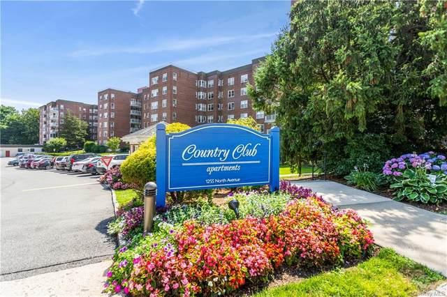 1255 North Avenue B-3Q, New Rochelle, NY 10804 (MLS #H6113823) :: Goldstar Premier Properties