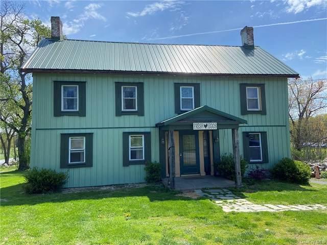 554 Drexel Drive, Pine Bush, NY 12566 (MLS #H6113833) :: Signature Premier Properties