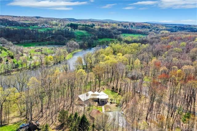 14 Amani Drive, Gardiner, NY 12525 (MLS #H6113877) :: McAteer & Will Estates | Keller Williams Real Estate
