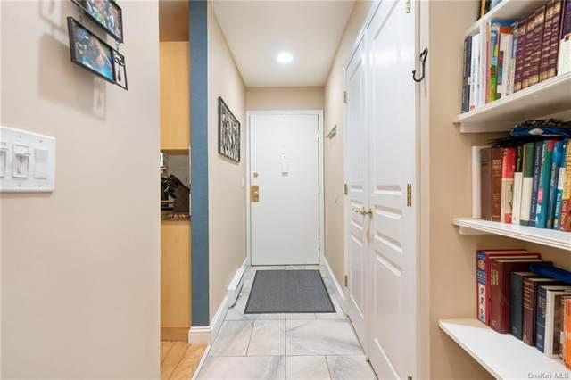 404 Drew Lane, Carmel, NY 10512 (MLS #H6114008) :: McAteer & Will Estates | Keller Williams Real Estate