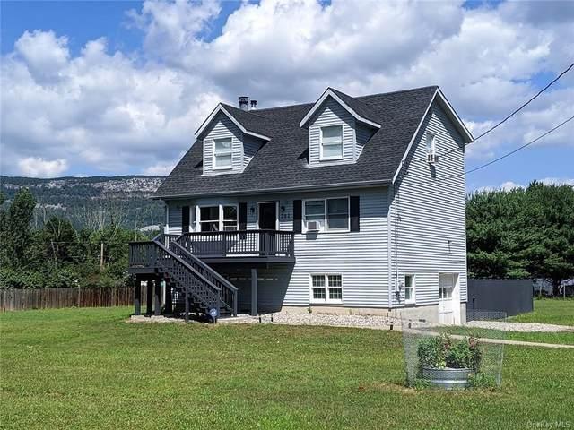 282 Mckinstry Road, Gardiner, NY 12525 (MLS #H6114039) :: McAteer & Will Estates | Keller Williams Real Estate