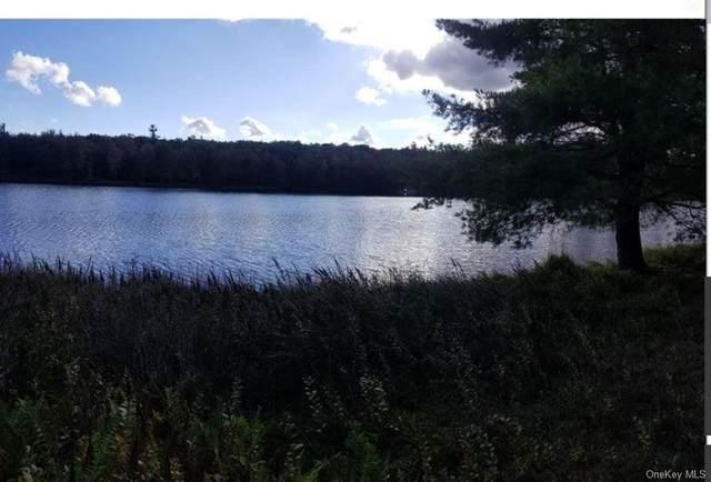 Pine Lake Drive, Wurtsboro, NY 12790 (MLS #H6114071) :: The McGovern Caplicki Team