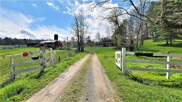 54 Olsen Road, Lake Huntington, NY 12752 (MLS #H6114078) :: Corcoran Baer & McIntosh