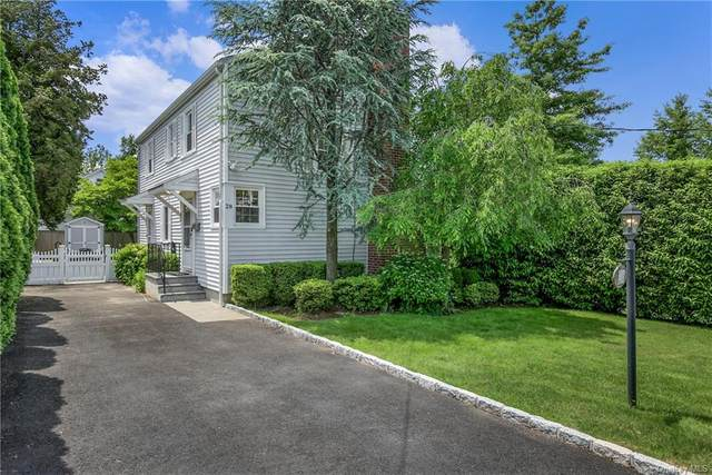 28 Alkamont Avenue, Scarsdale, NY 10583 (MLS #H6114090) :: RE/MAX RoNIN