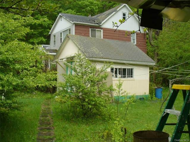 13 Chapel Street, Ellenville, NY 12428 (MLS #H6114222) :: Cronin & Company Real Estate