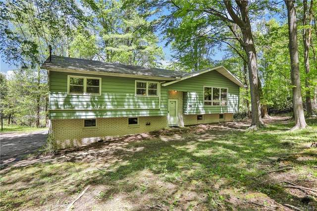 168 Flowerhill, Kingston, NY 12401 (MLS #H6114240) :: Shalini Schetty Team
