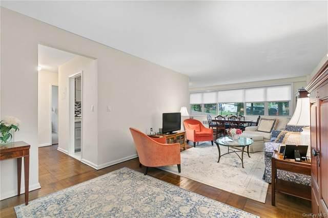 1299 Palmer Avenue #132, Larchmont, NY 10538 (MLS #H6114275) :: Howard Hanna Rand Realty