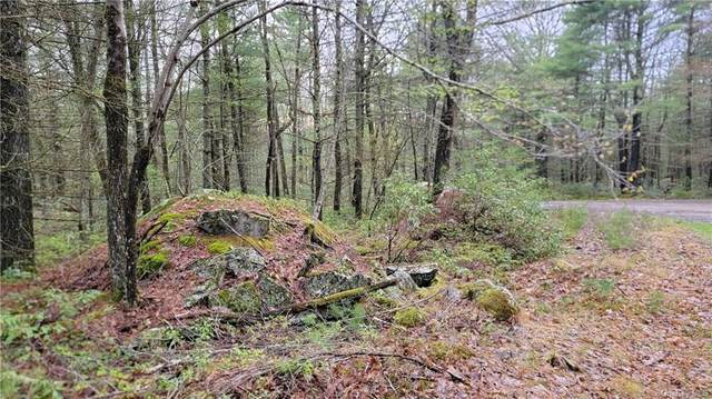 Lot #7 Mud Pond Road, Highland Lake, NY 12743 (MLS #H6114414) :: Frank Schiavone with William Raveis Real Estate