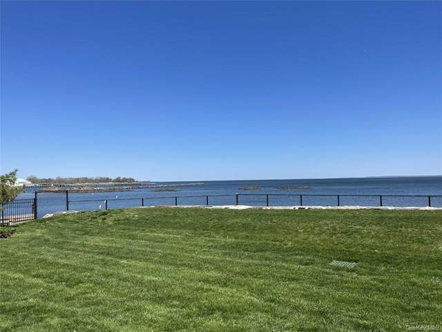 17 Waters Edge, Rye, NY 10580 (MLS #H6114511) :: Frank Schiavone with William Raveis Real Estate