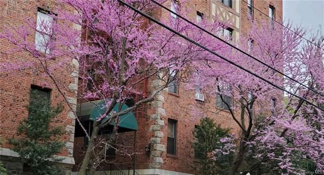 663 Locust Street 5F, Mount Vernon, NY 10552 (MLS #H6114715) :: Howard Hanna | Rand Realty