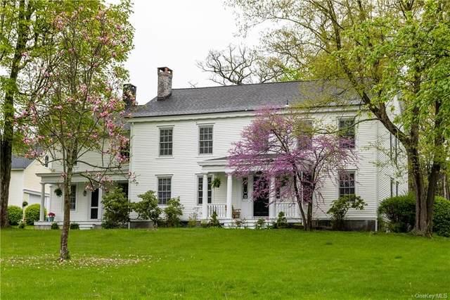 3231 Sharon Turnpike, Millbrook, NY 12545 (MLS #H6114754) :: Goldstar Premier Properties