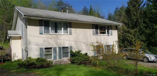 42 Upper Ferndale Road, Liberty, NY 12754 (MLS #H6114801) :: McAteer & Will Estates | Keller Williams Real Estate