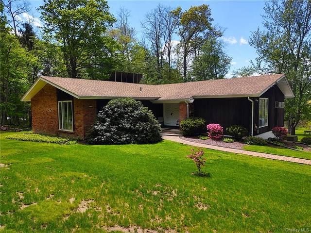 152 Gretna Woods Road, Pleasant Valley, NY 12569 (MLS #H6114809) :: Frank Schiavone with Douglas Elliman