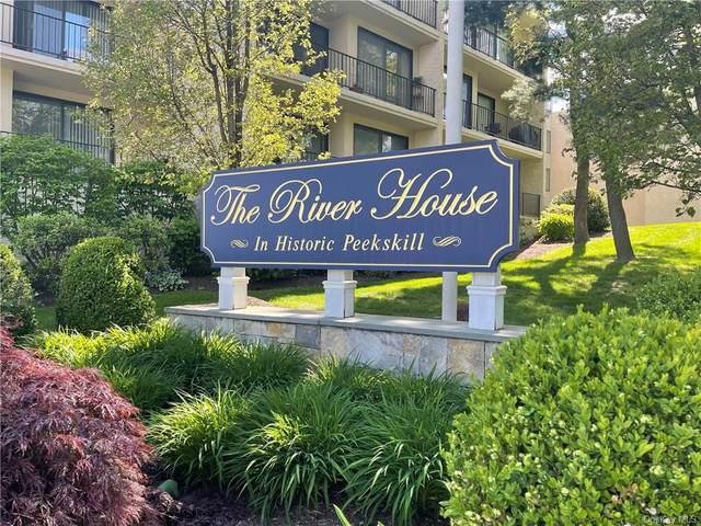 150 Overlook Avenue Ph-H, Peekskill, NY 10566 (MLS #H6114858) :: Mark Boyland Real Estate Team