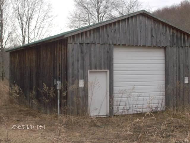 3211 Little Spring Brook Road, Roscoe, NY 12776 (MLS #H6114892) :: Cronin & Company Real Estate