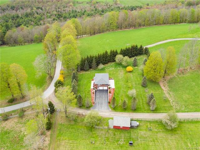 5 Smith Road, Swan Lake, NY 12783 (MLS #H6114974) :: Mark Boyland Real Estate Team