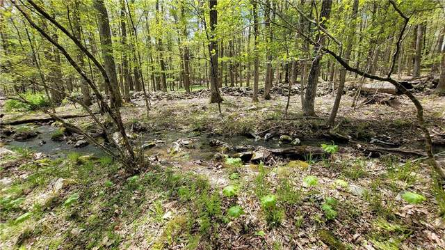 Lot 2.16 Woods Road, Highland, NY 12528 (MLS #H6115173) :: Frank Schiavone with William Raveis Real Estate