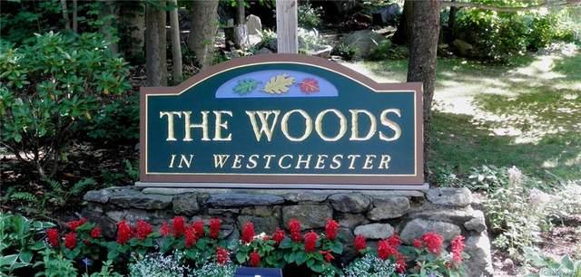 74 Woods Brooke Circle, Ossining, NY 10562 (MLS #H6115317) :: Mark Seiden Real Estate Team