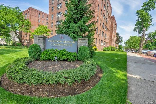 1 Fisher Drive #305, Mount Vernon, NY 10552 (MLS #H6115389) :: RE/MAX RoNIN
