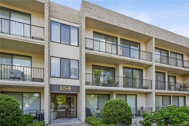 154 Overlook Avenue 2L, Peekskill, NY 10566 (MLS #H6115391) :: Carollo Real Estate