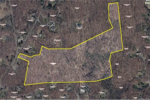Smith Ridge Road, South Salem, NY 10590 (MLS #H6115419) :: Mark Boyland Real Estate Team
