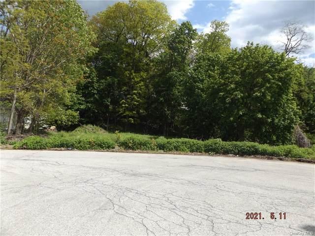 45 Buena Vista Avenue, Peekskill, NY 10566 (MLS #H6115435) :: Mark Seiden Real Estate Team