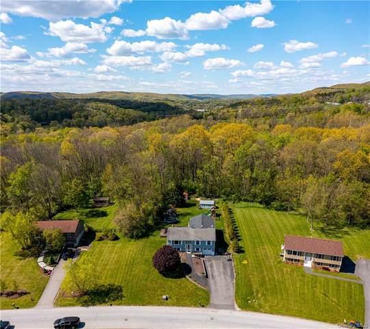 46 White Farm Road, Wingdale, NY 12594 (MLS #H6115478) :: Barbara Carter Team