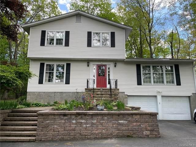 67 Buena Vista Terrace, Central Valley, NY 10917 (MLS #H6115533) :: Mark Boyland Real Estate Team