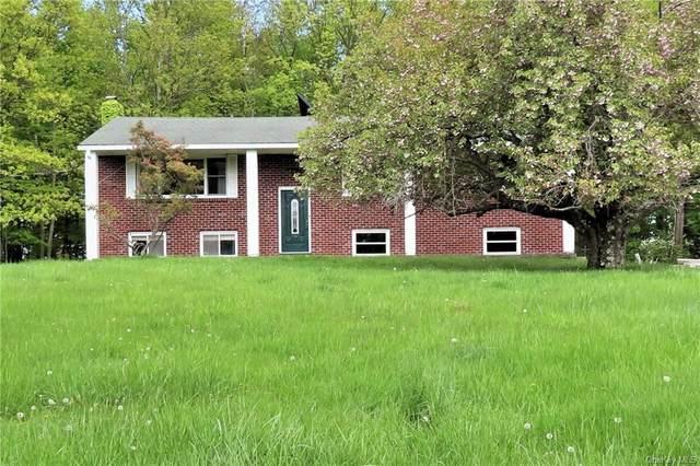 41 Depalma Drive, Highland Mills, NY 10930 (MLS #H6115616) :: McAteer & Will Estates | Keller Williams Real Estate