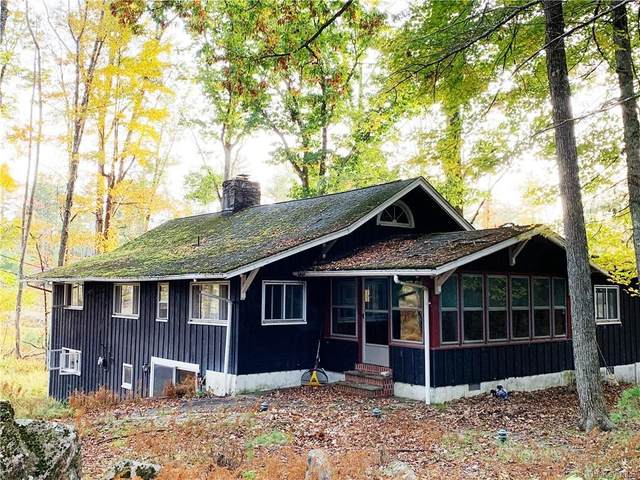 170 Merriewold Road, Forestburgh, NY 12777 (MLS #H6115743) :: Carollo Real Estate