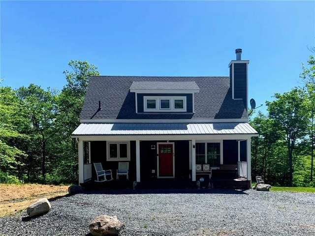 60 Clearwater Estates Drive, Livingston Manor, NY 12758 (MLS #H6115879) :: Barbara Carter Team