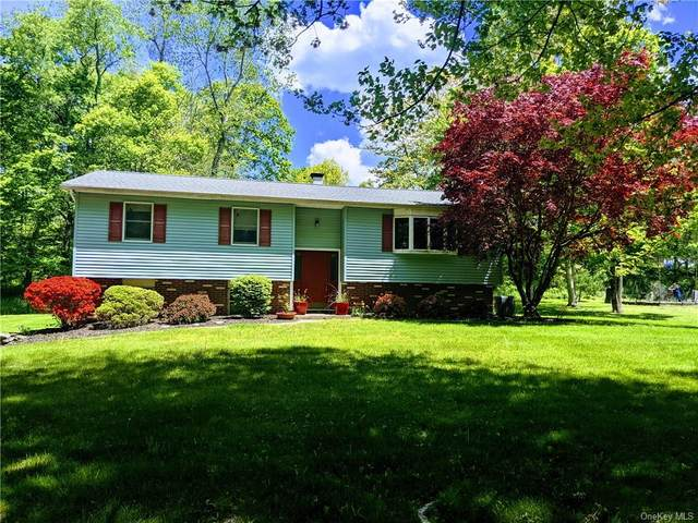 52 North Street, Patterson, NY 12563 (MLS #H6115886) :: Kendall Group Real Estate | Keller Williams