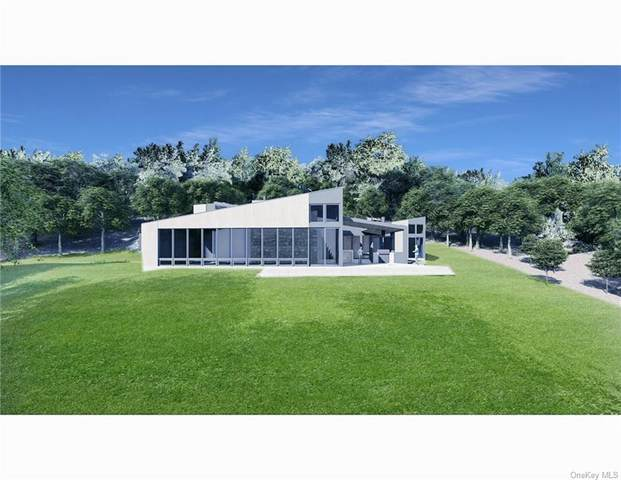 25 Birch Hill Road, Putnam Valley, NY 10579 (MLS #H6115950) :: Mark Seiden Real Estate Team