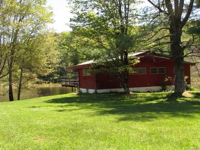 2596 Nys Hwy 17B, Bethel, NY 12720 (MLS #H6115992) :: Kendall Group Real Estate | Keller Williams