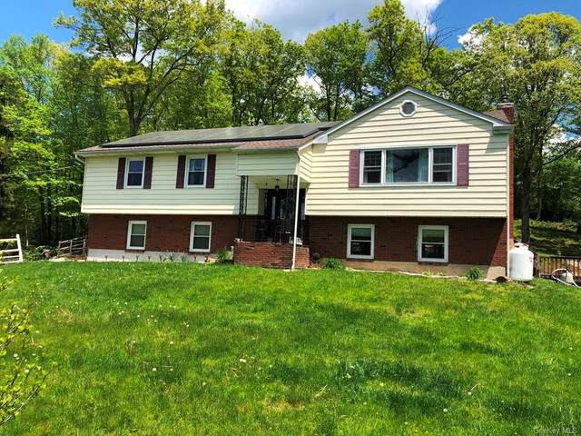 106 Schrade Road, Carmel, NY 10512 (MLS #H6116144) :: Kendall Group Real Estate | Keller Williams