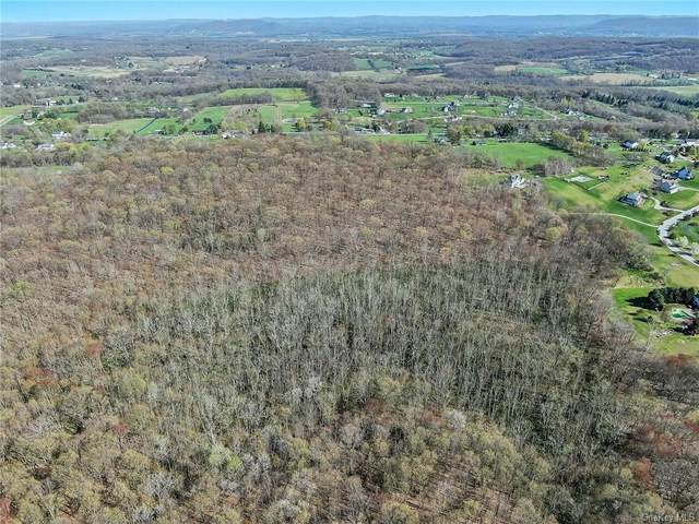 S Plank Road, Westtown, NY 10998 (MLS #H6116211) :: Cronin & Company Real Estate