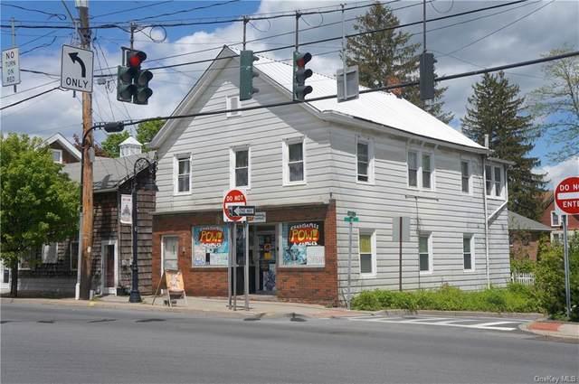 175 Broadway/Route 9W, Esopus, NY 12466 (MLS #H6116220) :: McAteer & Will Estates   Keller Williams Real Estate