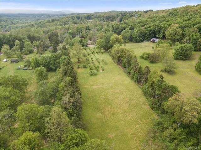 188 Sylvan Lake Road, Hopewell Junction, NY 12533 (MLS #H6116278) :: Carollo Real Estate