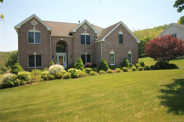 132 Devon Farms Road, Stormville, NY 12582 (MLS #H6116317) :: Barbara Carter Team