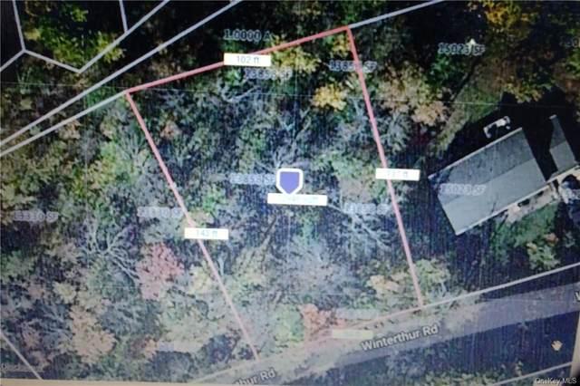 Winterthur Road, Fallsburg, NY 12733 (MLS #H6116459) :: Goldstar Premier Properties